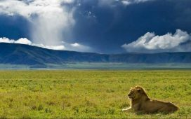 Cratère du Ngorongoro en Tanzanie